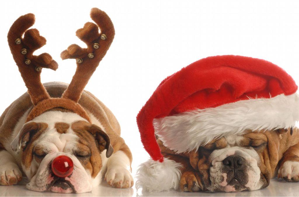Ihnen geht Weihnachten auf die Nerven? Dann sprengen Sie doch das Fest – mit unseren todsicheren Tipps klappt das. Foto: 10222329