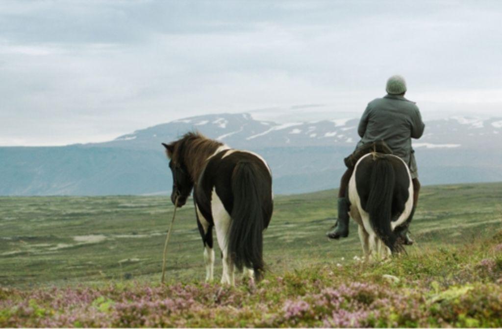 """Sieht das ein wenig wild-romantisch aus, wie Rasierwasserwerbung alter Schule? Genau diese Romantik  zertöppert der Island-Film """"Von Menschen und Pferden"""". Foto: NFP"""