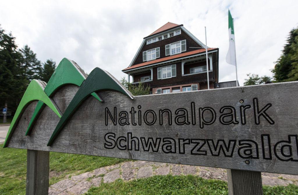 Der zweigeteilte Nationalpark Schwarzwald wurde 2014 gegründet. Foto: dpa