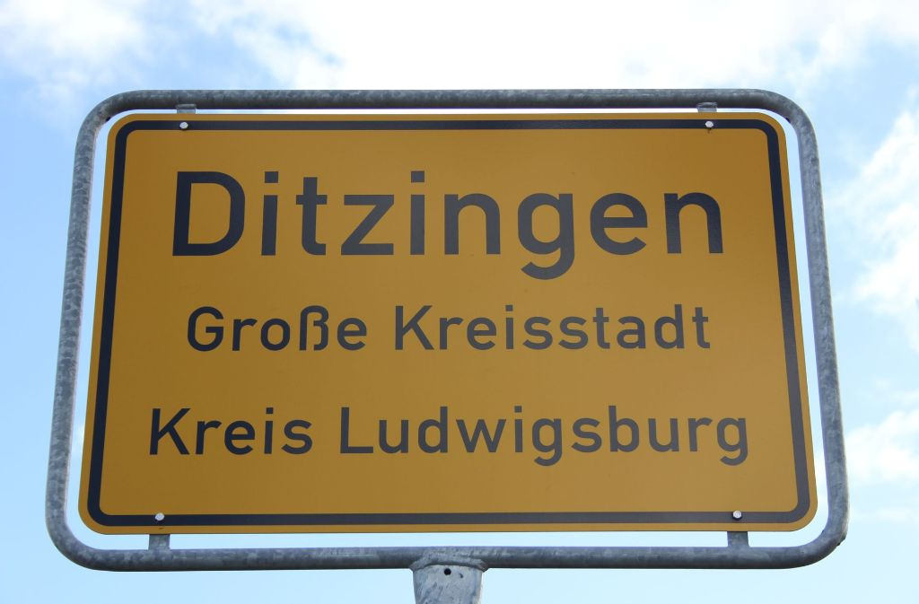 Die Bürgerstiftung Ditzingen ist auf der Suche nach neuen Geldquellen. Foto: Pascal Thiel