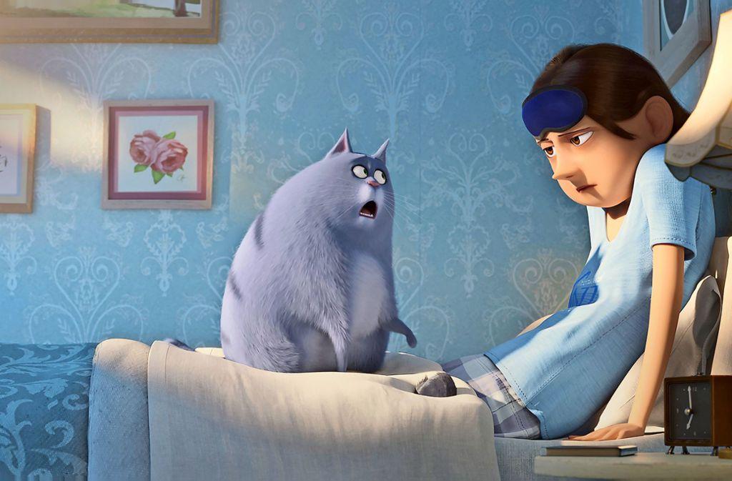 """Die Katze Chloe bereitet ihrer Besitzerin viel Freude in """"Pets  2"""" Foto: Verleih"""