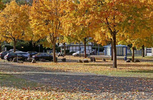 Der goldene Herbst kann mich mal