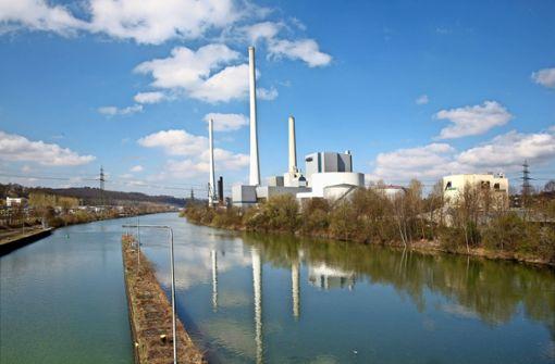 Mit grüner Energie in eine rosarote Zukunft