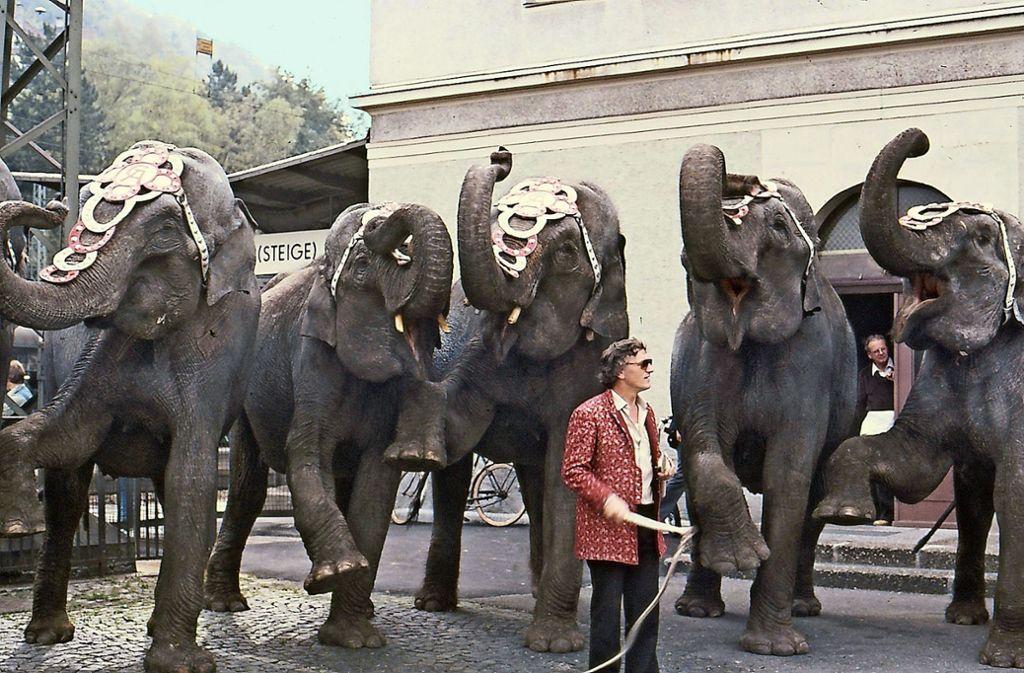 Im Jahr 1983 warb Wolfgang Dorsch mit Elefanten, die er von einem Zirkus ausgeliehen hatte, für den Bahnhof in Geislingen. Foto: privat