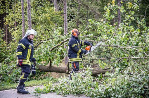 Vorsicht bei Spaziergängen durch Stuttgarts Wälder