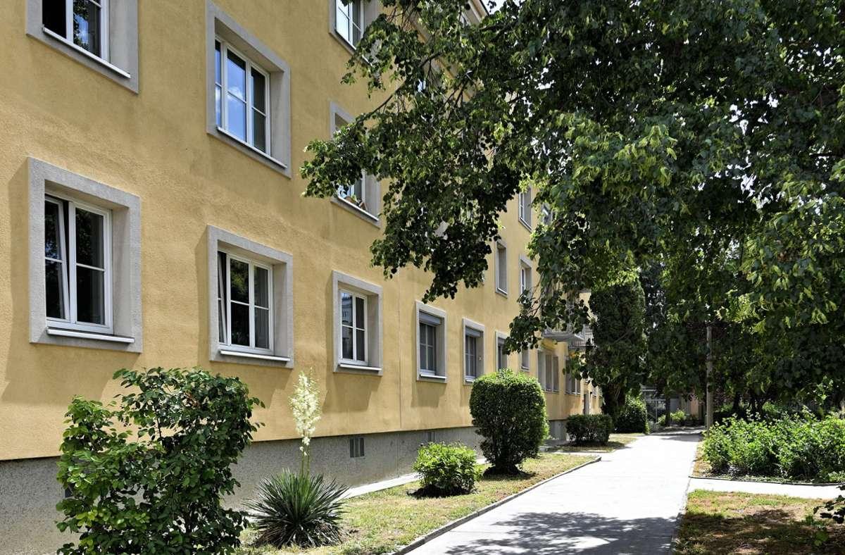 Die Wohnhausanlage, in der zwei Verdächtige ein 13-jähriges Mädchen getötet haben sollen Foto: dpa/Herbert Neubauer