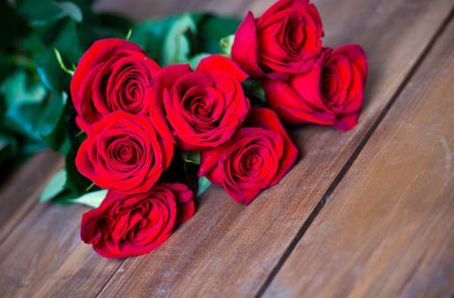 Die Rosen-Anzahl spielt eine wichtige Rolle für die Botschaft. Alles über die Bedeutung der Anzahl von Rosen als Geschenk.