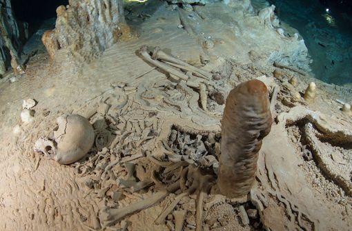 Forscher datieren Skelett mithilfe von Tropfstein
