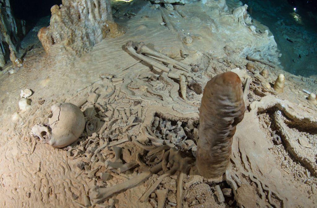Ein Tropfstein hat bei der Datierung eines 13 000 Jahre alten Skeletts geholfen. Foto: Liquid Junge Lab