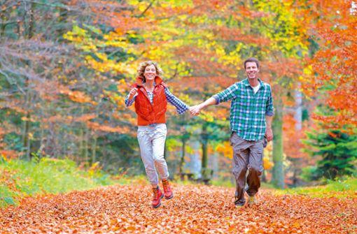 Herbst - Bunte Wanderwege im Nördlichen Schwarzwald