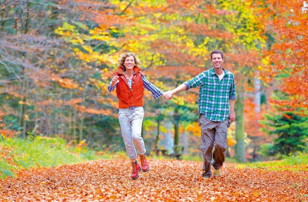 Herbst - Bunte Wanderwege im Nördlichen Schwarzwald Foto: Tourismus GmbH Nördlicher Schwarzwald