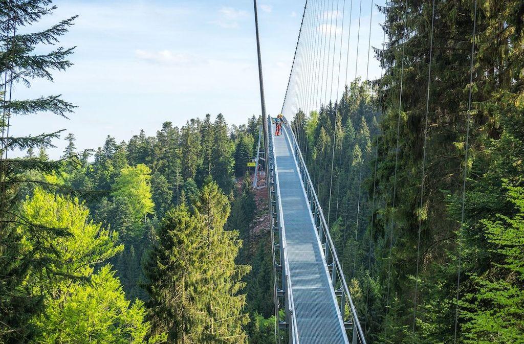 Hängeseilbrücke Wildline  Foto: Tourismus GmbH Nördlicher Schwarzwald