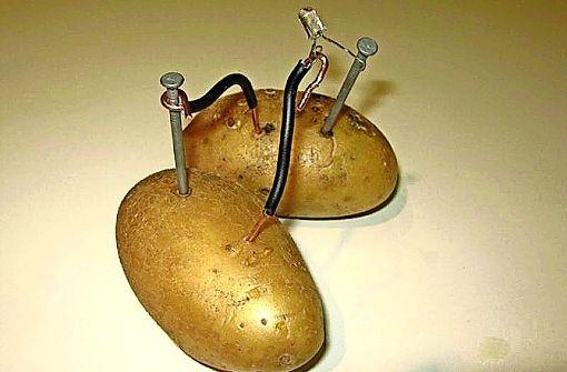 Wie aus Kartoffeln Strom entsteht