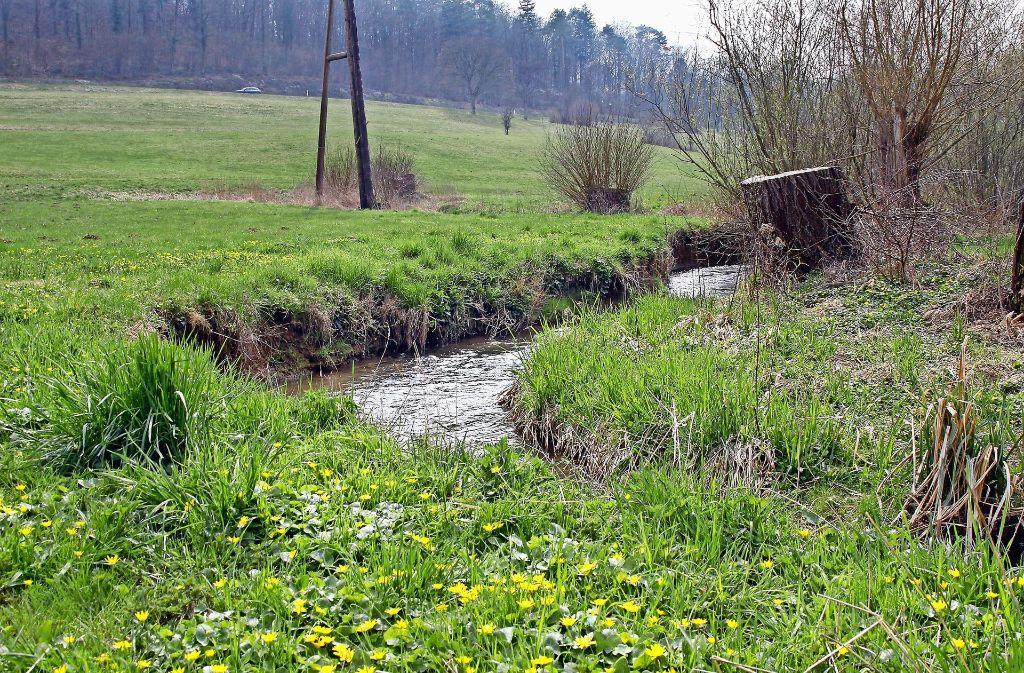 Der Hochwasserschutz am Strudelbach hat schon für einige Diskussionen gesorgt. Selbiges gilt nun auch für den Prüfbericht des Zweckverbands. Foto: factum/Weise