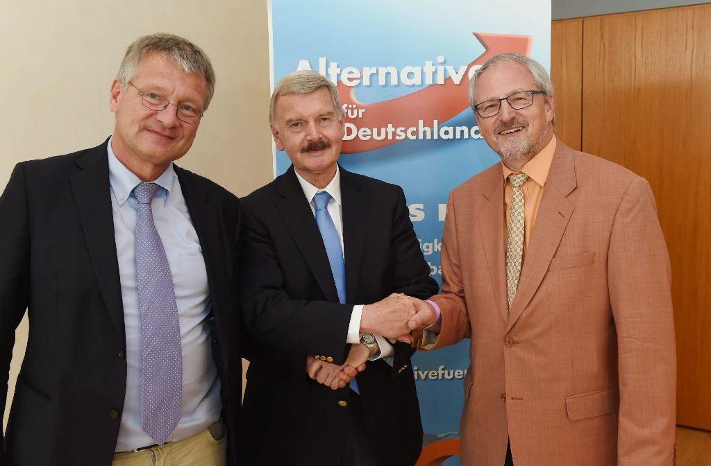 Die drei neu gewählten Sprecher des AfD-Landesverbands Baden-Württemberg: Jörg Meuthen, Lothar Maier und Bernd Grimmer (v. l.). Foto: dpa