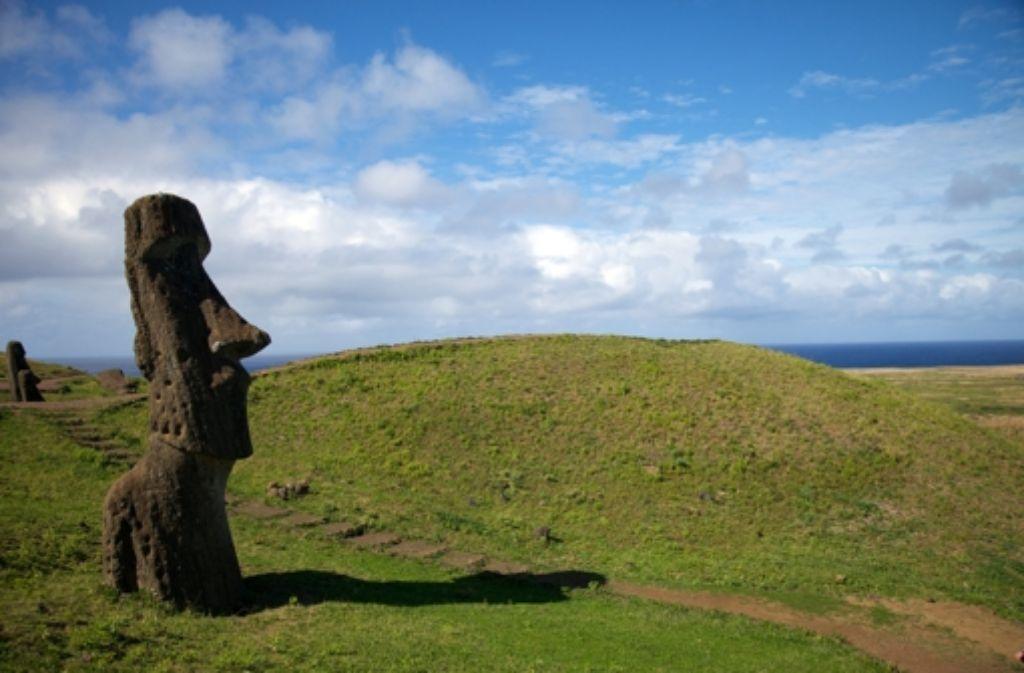 Bis zu zehn Meter groß sind die Steinfiguren, für die die Osterinsel bekannt ist. Foto: