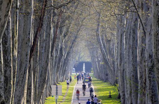 Unbekannter belästigt Joggerin im Schlossgarten