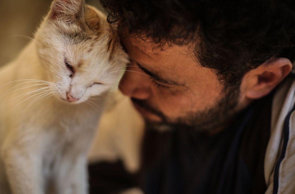 """Mohammed Alaa al-Dschalil, der """"Katzenmann von Aleppo"""", liebkost eine Katze in seinem Tierheim in der kriegszerstörten syrischen Stadt. Foto: dpa"""