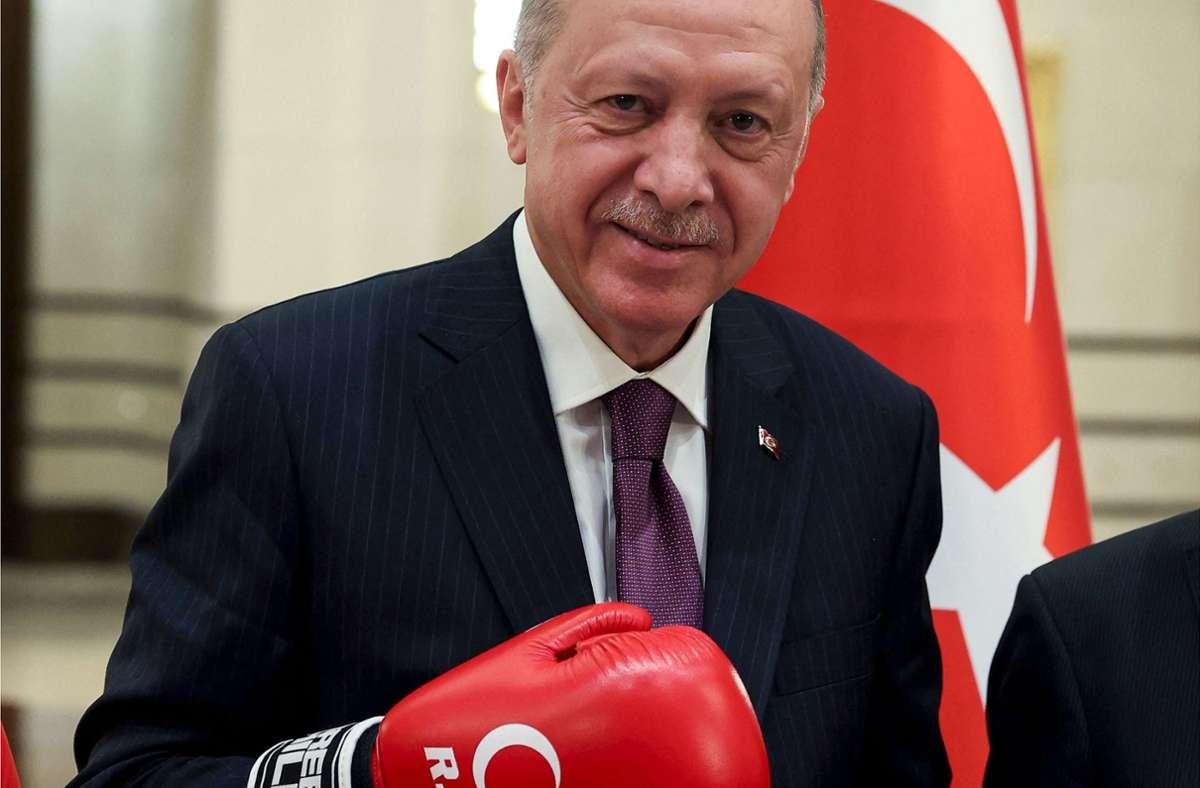 Der türkische Präsident Erdogan bekämpft seine Kritiker. Foto: AFP/Murat Cetinmuhurdar