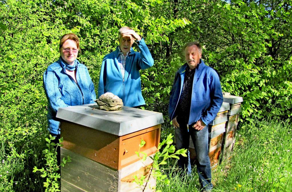 Elisabeth Breining, Eberhard Wulle und Hermann Breining (von links) verstehen die Welt nicht mehr. Foto: Judith A. Sägesser