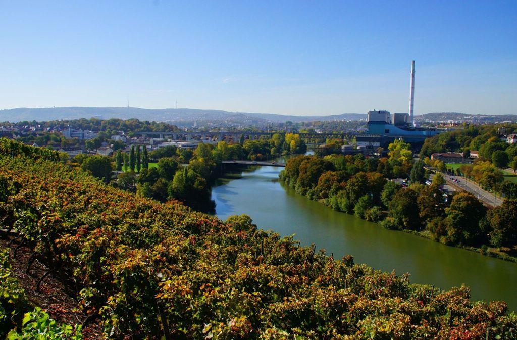 Die Weinberge beginnen sich zu färben, der Herbst hält Einzug - höchste Zeit für ausdauernde Spaziergänge.  Foto: Andreas Rosar Fotoagentur-Stuttg