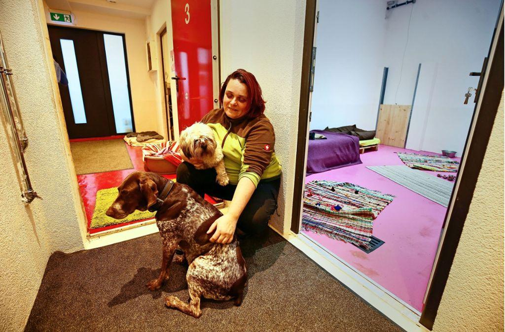 In der Tagesstätte Hundekörbchen kümmert sich Annette Lehmann liebevoll um ihre Schützlinge. Foto: factum/Granville