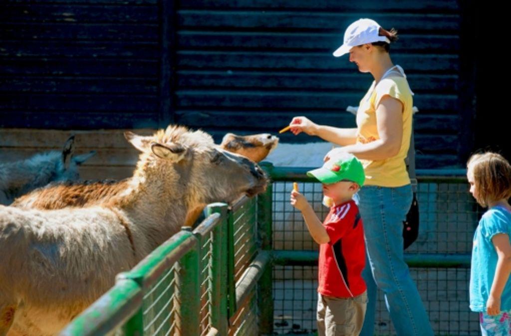 Vor allem bei kleinen Kindern ist der Göppinger Tierpark beliebt. Foto: Horst Rudel