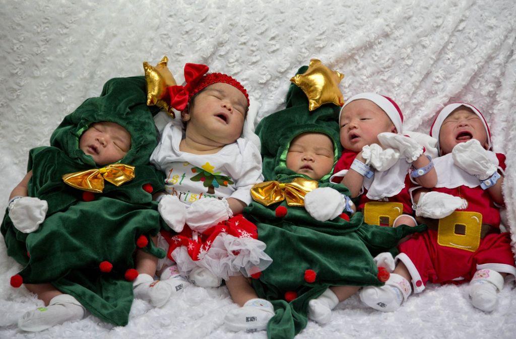 Ganz schön putzig: In einem Krankenhaus in Bangkok wurden Neugeborene in Weihnachtsmann- und Christbaumkostüme gesteckt. Foto: AP