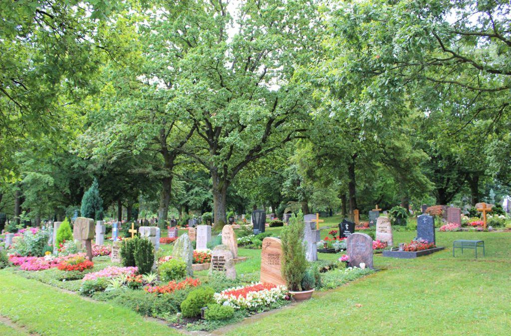 Der Ostfilderfriedhof in Stuttgart-Sillenbuch Foto: Caroline Holowiecki