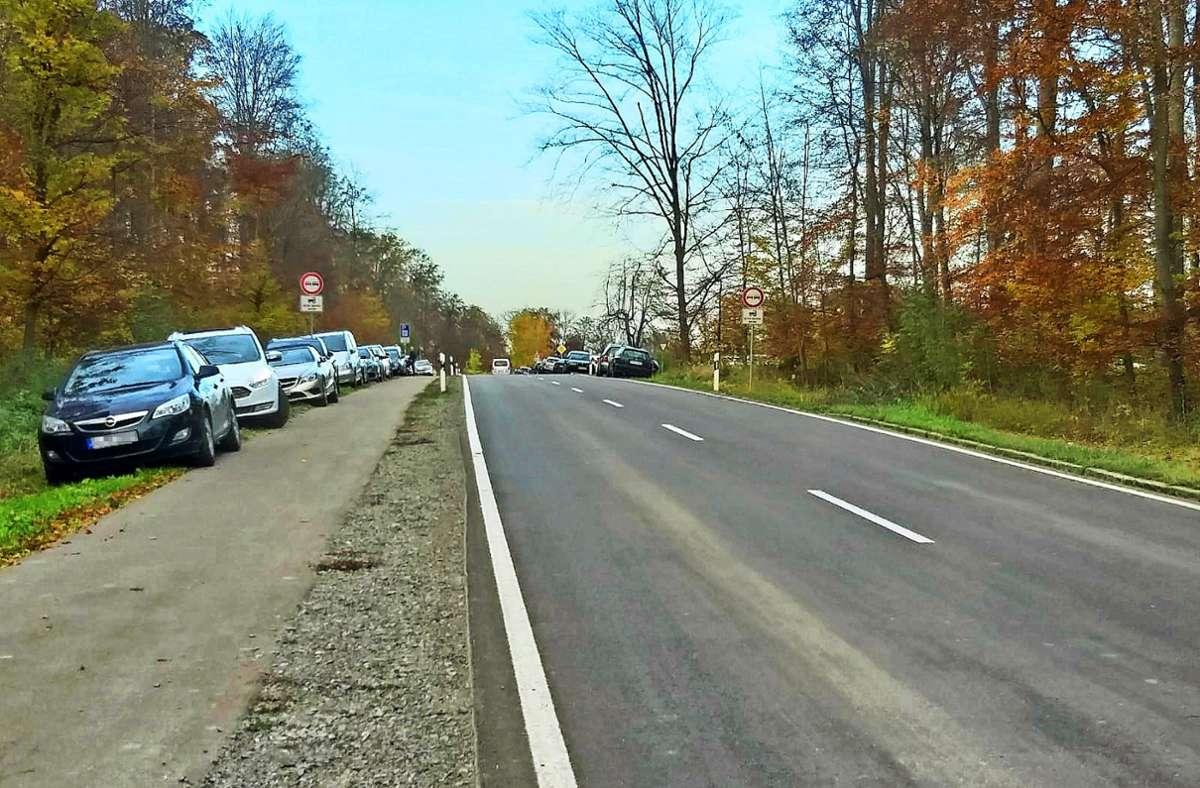 Gleich neben dem Ausflugsziel bei Waldenbuch wird wild geparkt Foto: privat/Schall