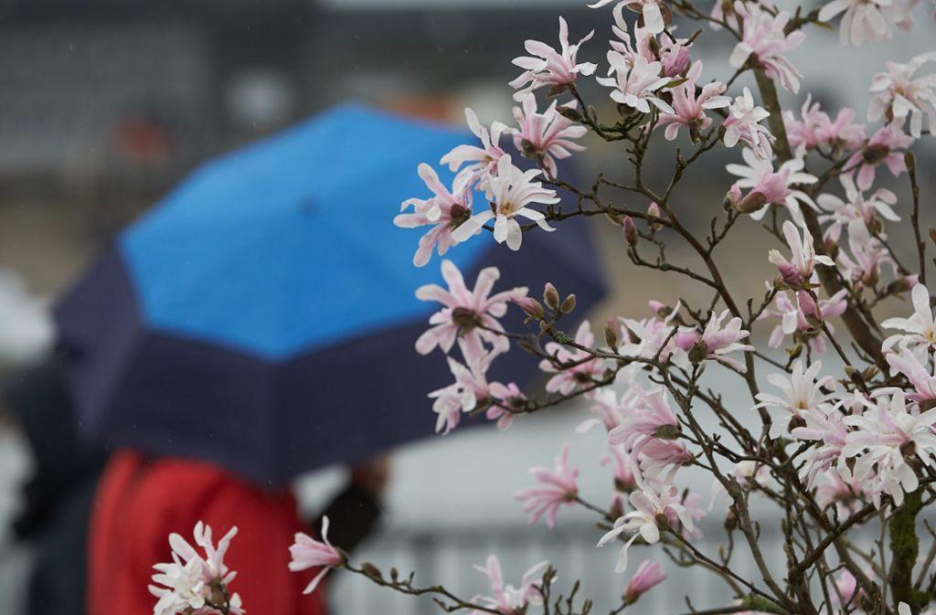 Nach einem sommerlichen Wochenende erwarten den Südwesten tiefere Temperaturen und Regen. Foto: dpa