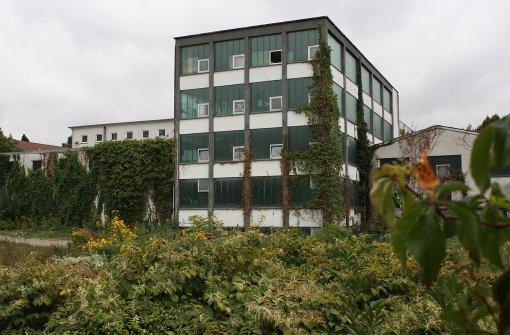 Nahe der Weinberge entstehen 130 neue Wohnungen