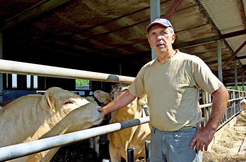 Dreimal kamen die Viehdiebe schon zu Rinderzüchter Volker Naschke. Jeder Diebstahl ist für ihn eine kleine Katastrophe. Foto: Katja Bauer