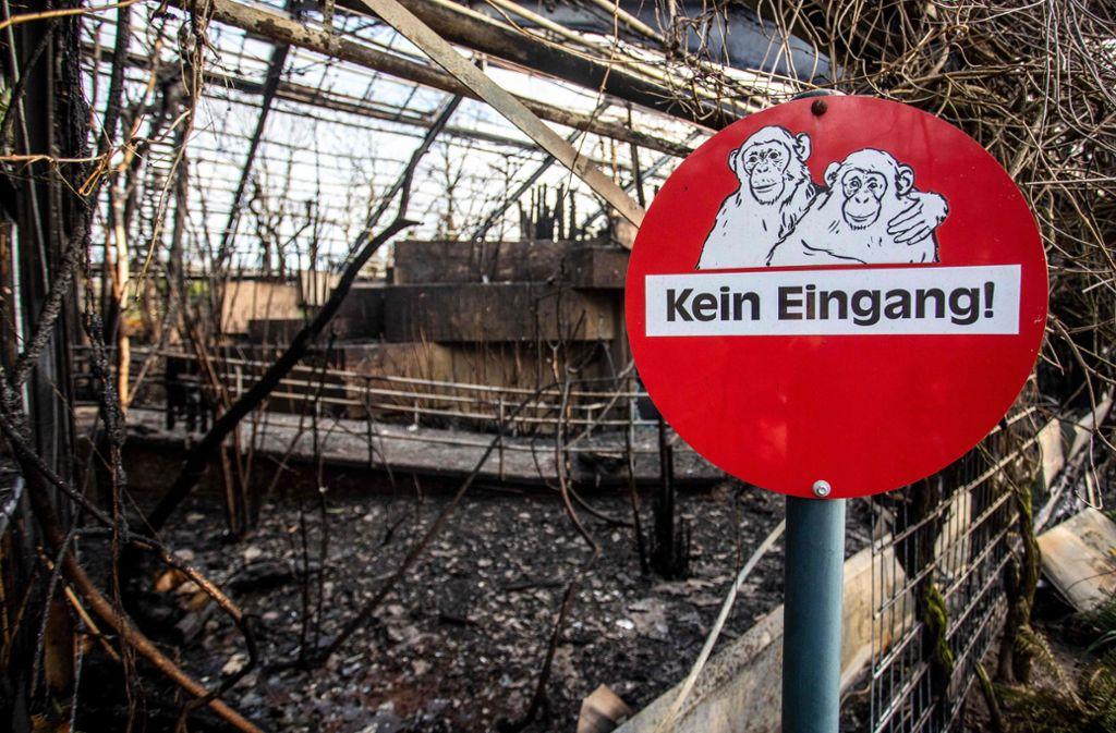 In Krefeld ist das Affenhaus in der Neujahrsnacht abgebrannt. Foto: AFP/Christoph Reichwein