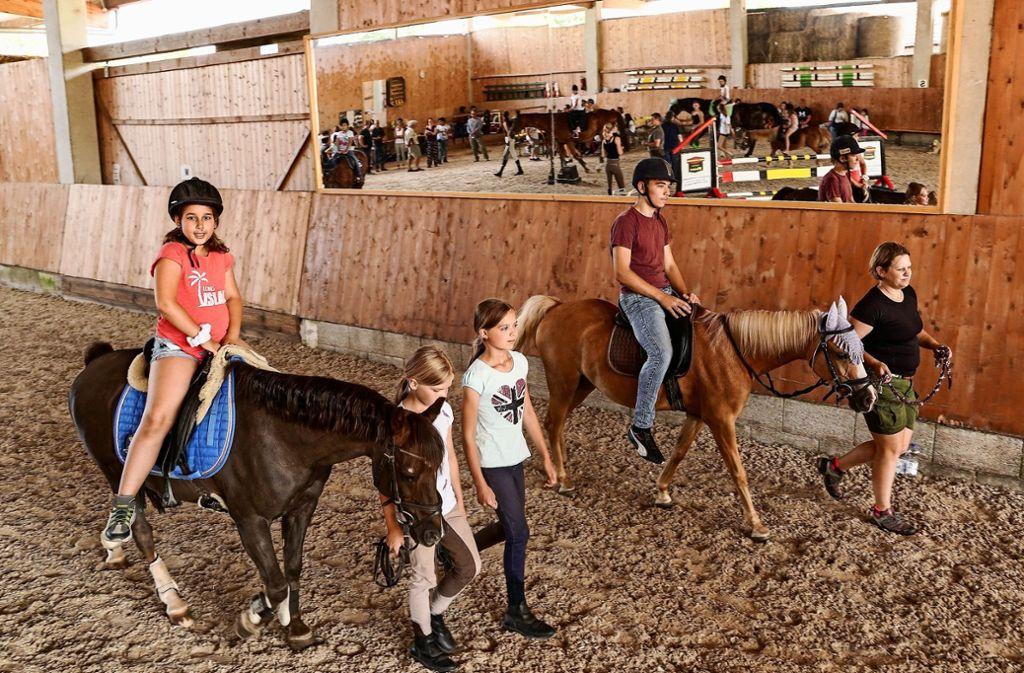 Die Schüler lernen, unter Anleitung zu reiten, mitunter sogar im Galopp. Foto: factum/