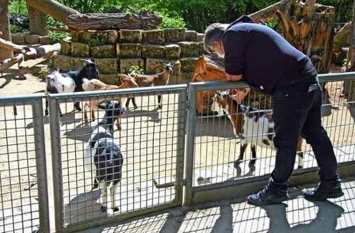 Tierpark Nymphaea öffnet wieder