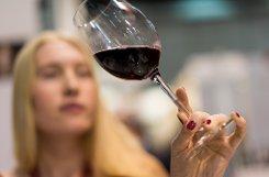 Weinsammlung in der Unterwelt