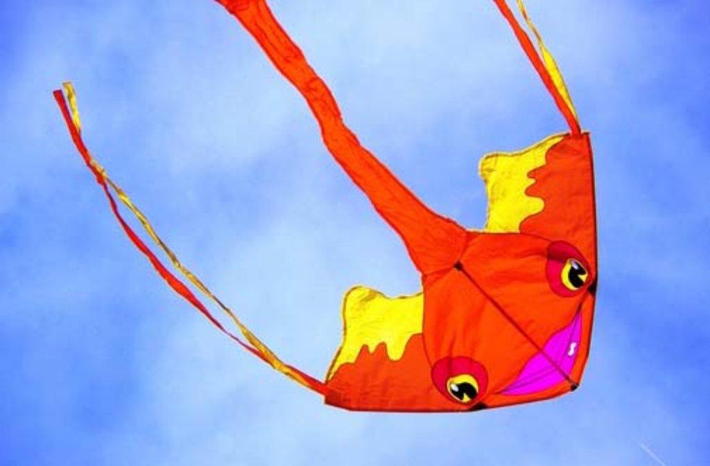 Die tollsten Drachen beim 7. Drachenfest und Herbstmarkt in Ostfildern, aufgenommen von unseren Leserfotografen. Foto: Leserfotograf ninive