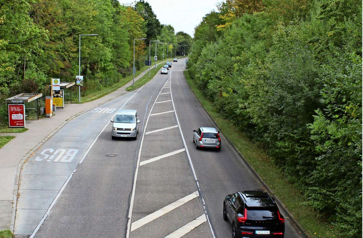 Auf der Ohnholdstraße gilt Tempo 50. Daran halten sich nicht alle Fahrer. Foto: J. Fritsch
