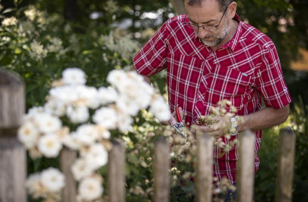 Der Gartenexperte Volker Kugel kommt  am Donnerstag nach Winterbach. Foto:Gottfried Stoppel Foto: