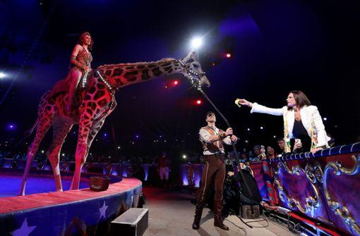 Prinzessin Stephanie und die Giraffe