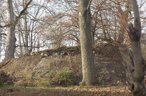Schlosspark in Stetten praktisch  frei von Arsen