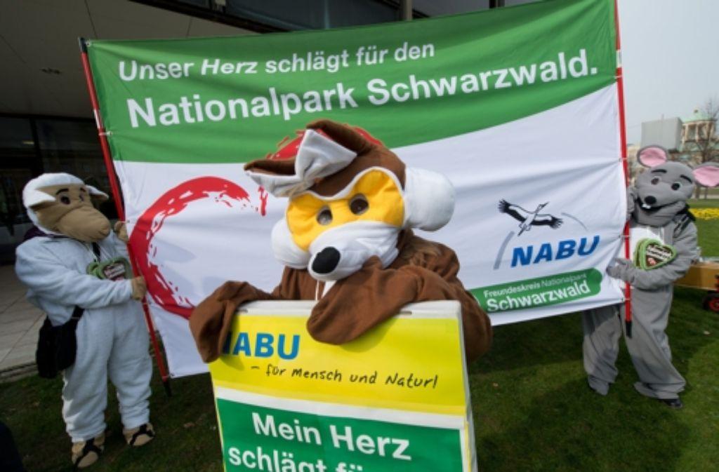 Ein Nationalpark Schwarzwald bietet Chancen und birgt wenige Risiken. Foto: dpa