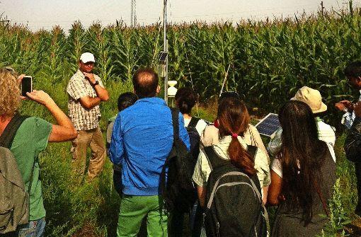 Uni Hohenheim will Exzellenz bei Klimaforschung