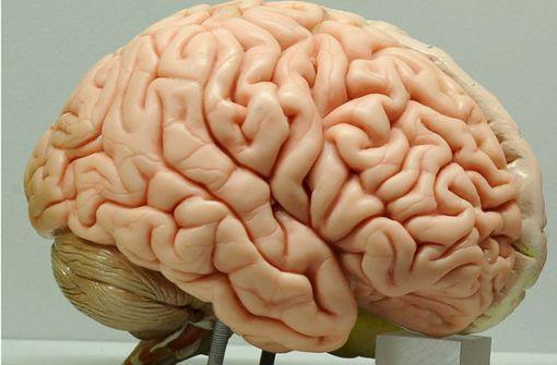 Effizienteres und längeres Erinnern lässt sich trainieren