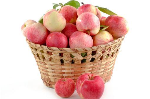 Bester Apfelsaft kommt aus Höfingen