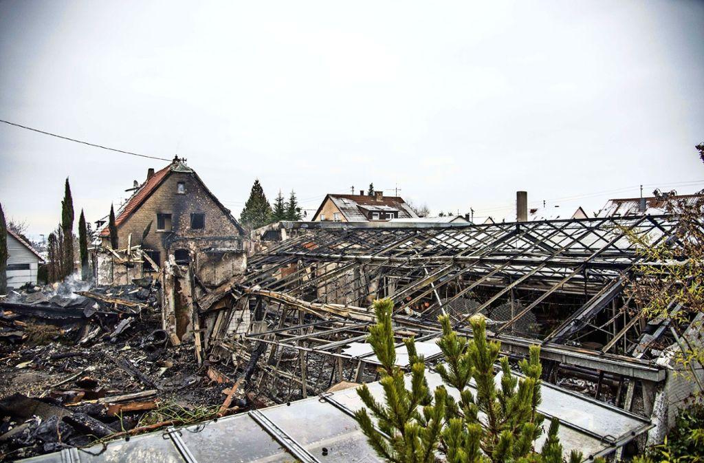 Die Gärtnerei nach dem Brand. Ralf Ruess dankt allen, die ihm in schwerer Stunde geholfen haben. Foto: Archiv SDMG