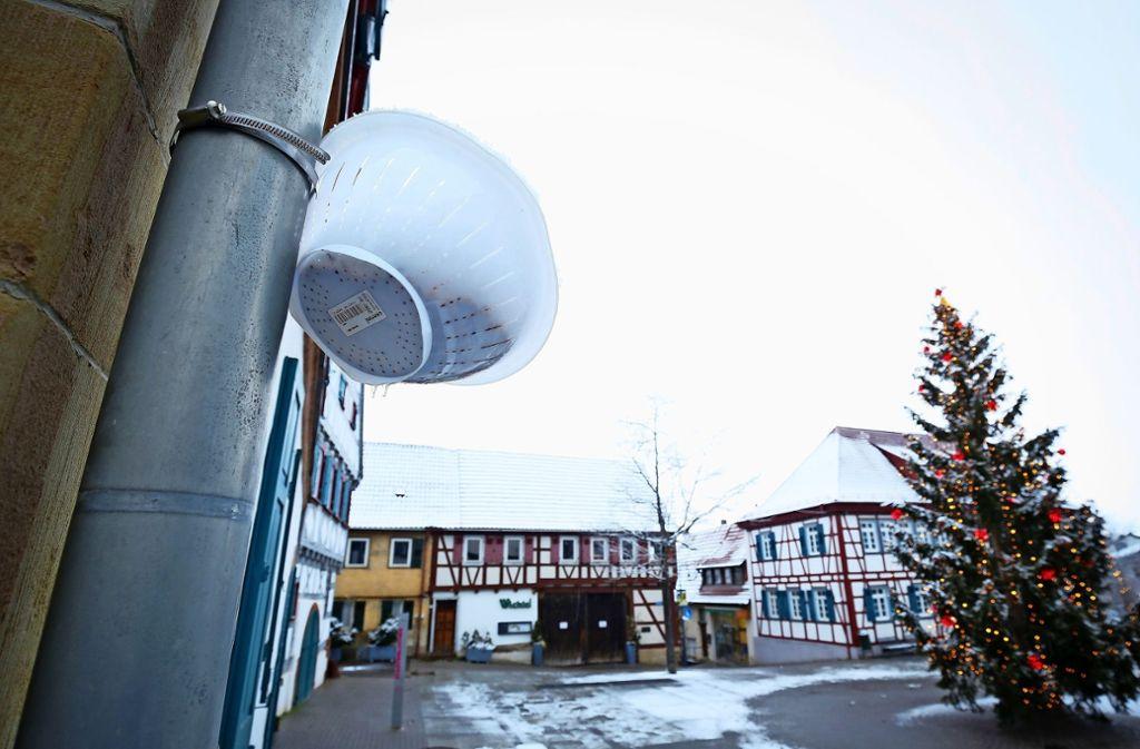 Voller  Futter: eines von elf Salatsieben in der Ditzinger Innenstadt Foto: factum/Granville
