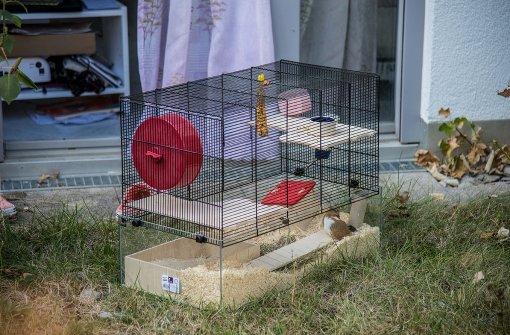 Feuerwehr rettet Hamster aus brennender Wohnung