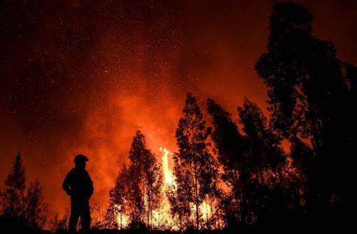 20 Verletzte bei ersten großen Waldbränden in diesem Jahr